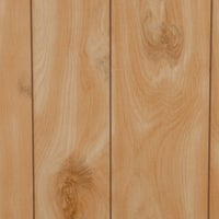119 DPI Honey Birch Woodgrain Wall Paneling paneling wall