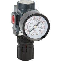 EX25R-02 Milton ExelAir Pressure Regulator pressure regulator