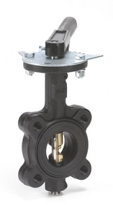 3 in. Cast Iron EPDM Lever Handle Butterfly Valve