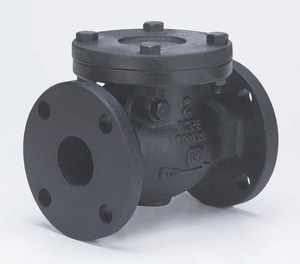 2-1/2 in. Cast Iron Flanged Swing Check Valve